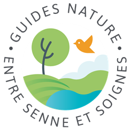 Guides nature Linkebeek